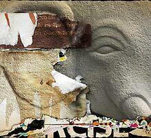 Elephant by Laurent Hunziker