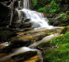 Peaceful Flowing Waterfall by KellyHeaton