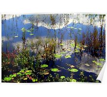 Clouds Accross the Lily Pads Poster