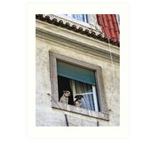Lisbon Castle Waldorf And Statler Dogs Art Print