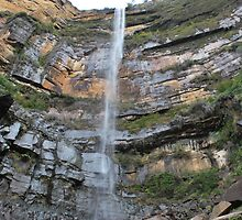 Glovetts Leap Falls by Warren  Patten