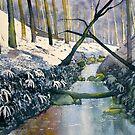 Dane's Dyke after snow by Glenn Marshall