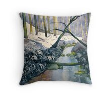 Dane's Dyke after snow Throw Pillow