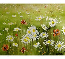 Meadow Flowers Photographic Print