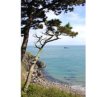 Cornwall Sea View Coleton Fishacre National Trust Photographic Print