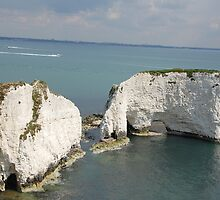 Old Harry Rock by Ian Nicholson