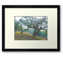 Views 3954***Olive trees. Zakintos. Greece. by Doctor Andrzej Goszcz.   Thanks  friends !!! Featured in Avant~Garde Art . Thanks !  Framed Print
