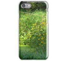 Catching Bullfrogs iPhone Case/Skin