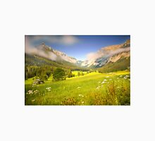 Summer meadow in the alps Unisex T-Shirt