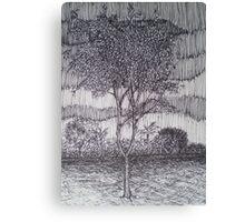 Rain Tree Canvas Print