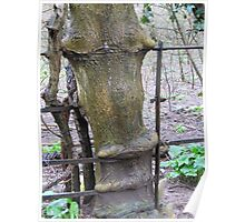 Tree growing through the iron fence Poster