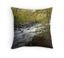 River Avon. Throw Pillow