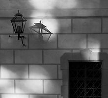 Fragrance of your shadow is about to enter through my window by Ethem Kelleci