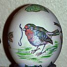 Austrich-egg by Heidi Mooney-Hill