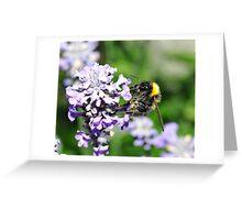 Peebles Bumblebee on Lavendar Greeting Card