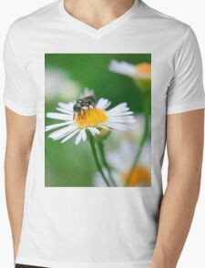 Insect Buffet Mens V-Neck T-Shirt