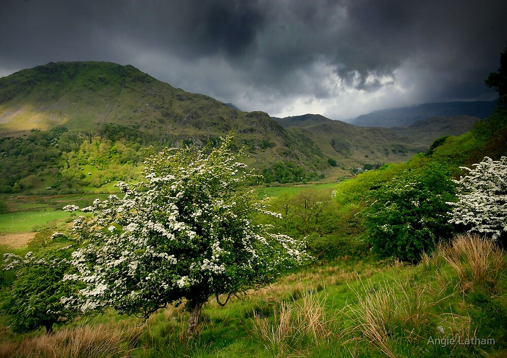 North Wales: How Green Was My Valley by Angie Latham