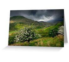North Wales: How Green Was My Valley Greeting Card