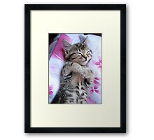 Is this not contentment? Framed Print