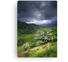 North Wales: How Green Was My Valley 2 Canvas Print
