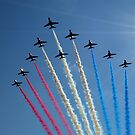 The Red Arrows by Carol Bleasdale