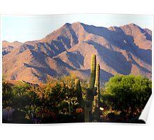 South Mountain, Arizona Poster