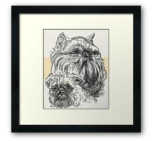 Brussels Griffon Father & Son Framed Print