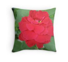 Waterfall Red Petals Throw Pillow