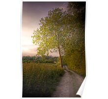 Country Road - Didcot, Oxfordshire, United Kingdom Poster