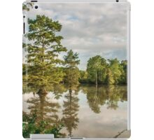 Stumpy Lake Morning Light iPad Case/Skin