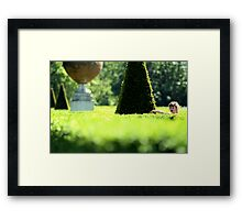 Topiary Garden - Cliveden, Taplow Bukinghamshire England Framed Print