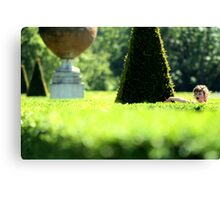 Topiary Garden - Cliveden, Taplow Bukinghamshire England Canvas Print
