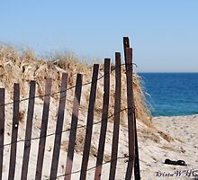 Long Island Beach Dune by kristawho