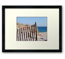 Long Island Beach Dune Framed Print