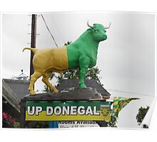 Up Donegal For GAA Finals - Burnfoot County Donegal Ireland . Poster
