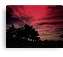Sky  Above the Earth Below   Canvas Print