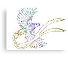 Ribbon-tailed Astrapia Metal Print