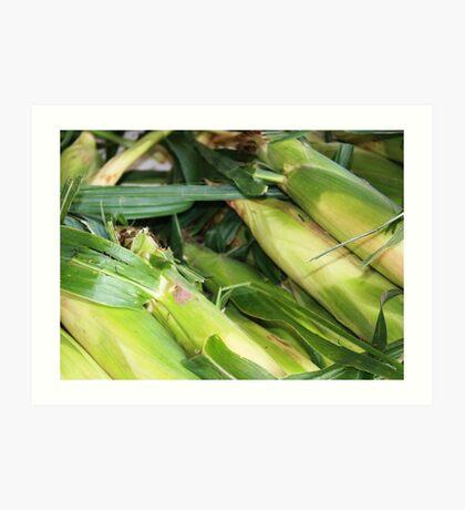 Farmers Market Corn Art Print