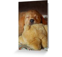 First Teddy Snooze Greeting Card