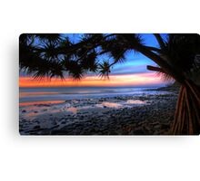 Pandanus Sunset Canvas Print