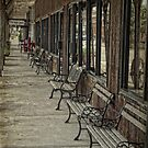 Row of Benches by Colleen Drew