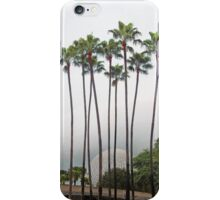 Palm Trees in Florida iPhone Case/Skin