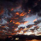 Cozumel Sunset by Denise J. Johnson