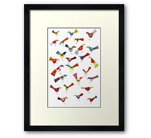 Birds doing bird things Framed Print