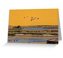 Early Morn on the Marsh Greeting Card