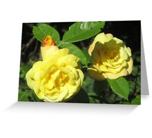 Yellow Rose IV Greeting Card