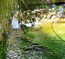 Water and Flowers by JackCasa