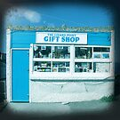 shopping by sue mochrie