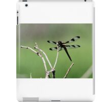 Transparent Wings iPad Case/Skin