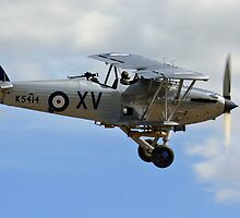 Hawker Hind by Spencer Trickett